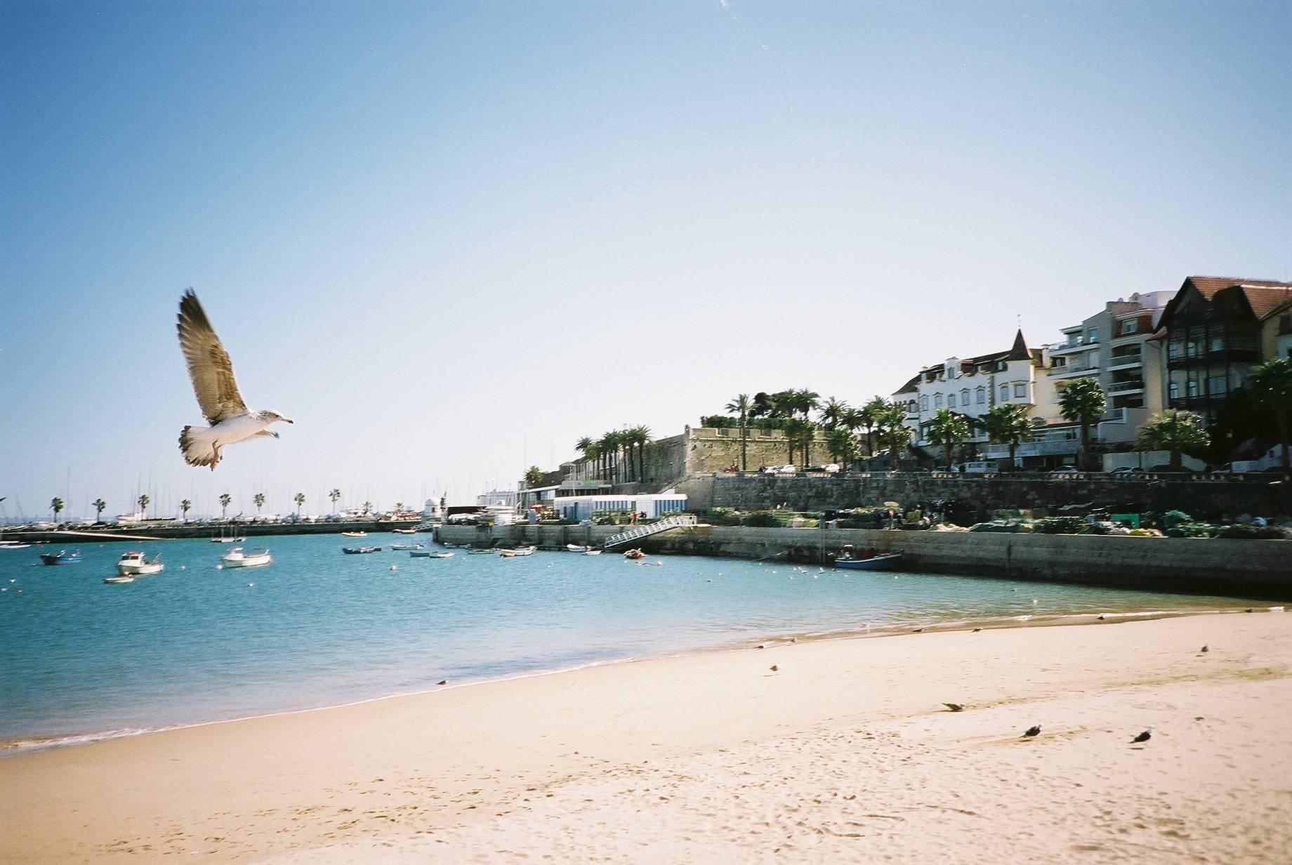 Tradições portuguesas, da Ilha da Madeira a Lisboa - Cascais
