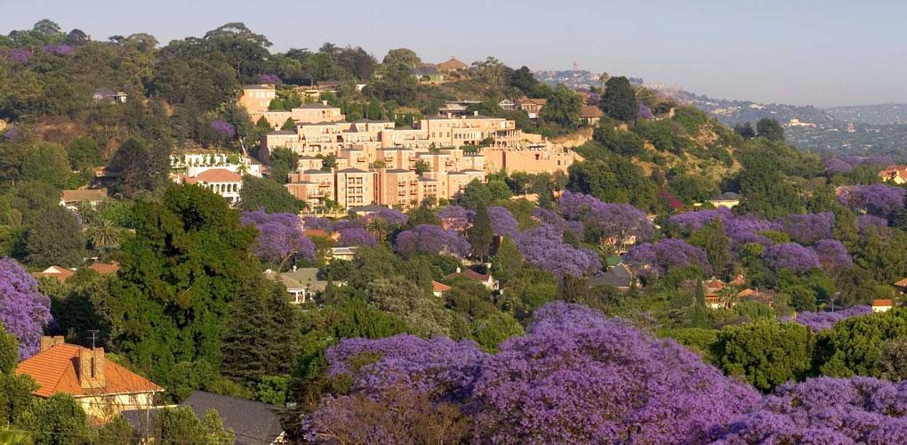 Botswana - Johannesburgo