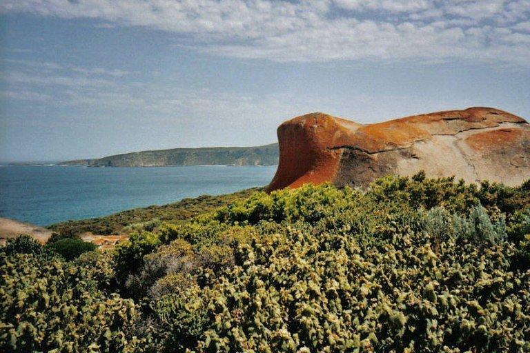 Kangaroo Island - Austrália em família