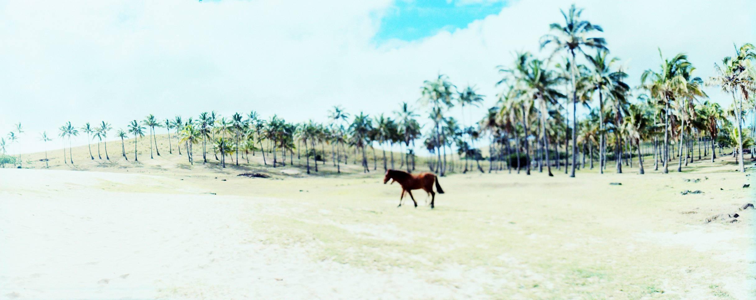 Anakena, Ilha de Páscoa