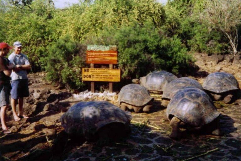 Galápagos: Ilhas do leste