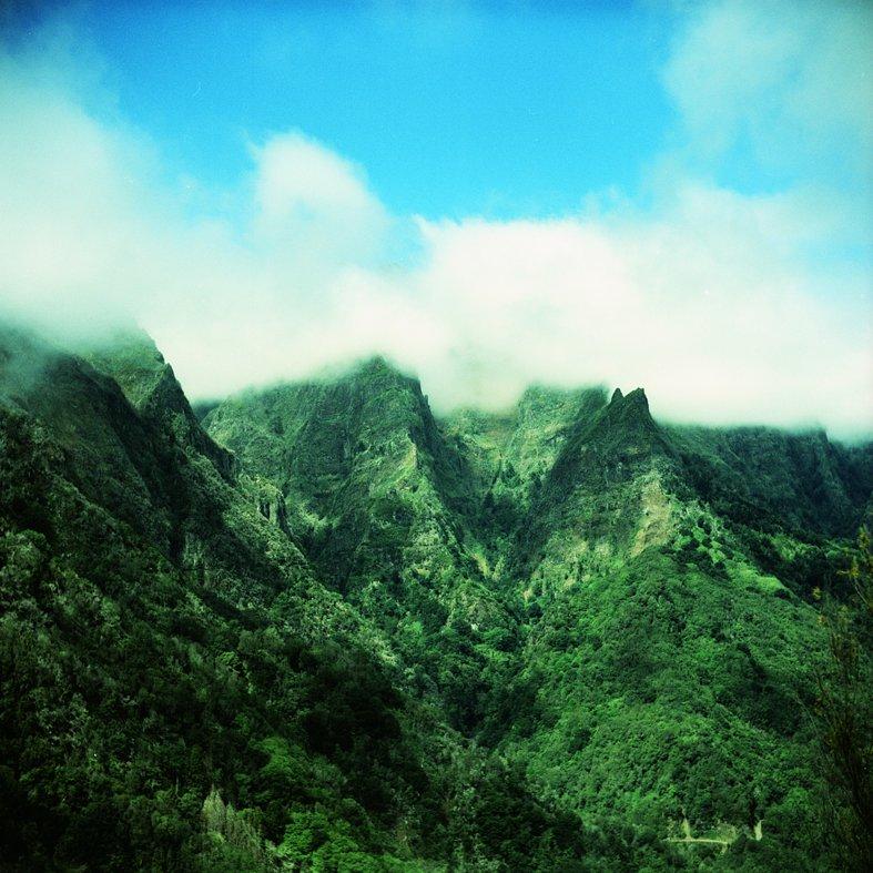 Os encantos da Ilha da Madeira - Ribeiro Frio