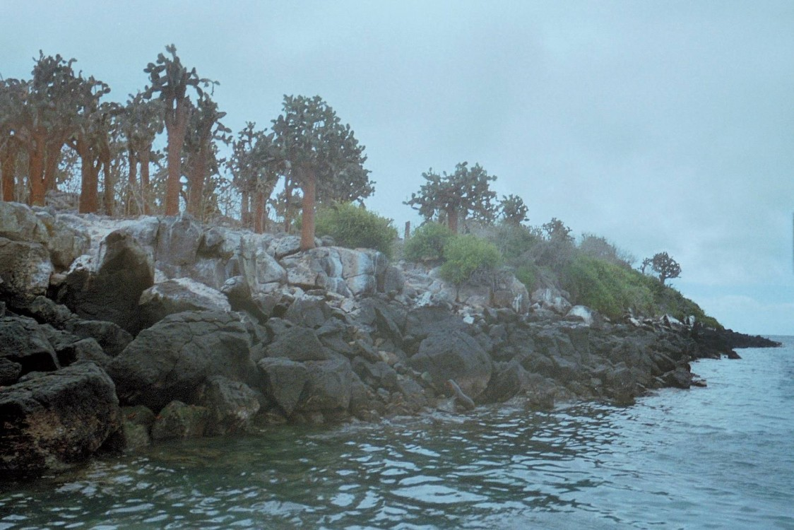 Galápagos: Ilhas do norte